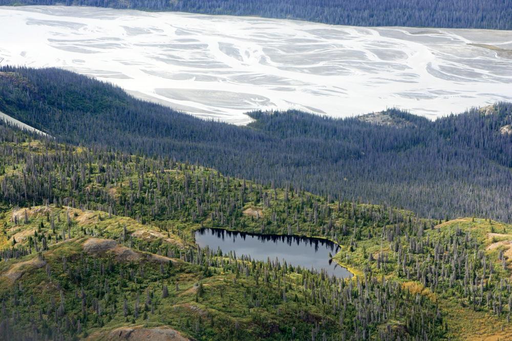 Tundralandschaft am Polarkreis im Kluane Nationalpark Yukon Kanada