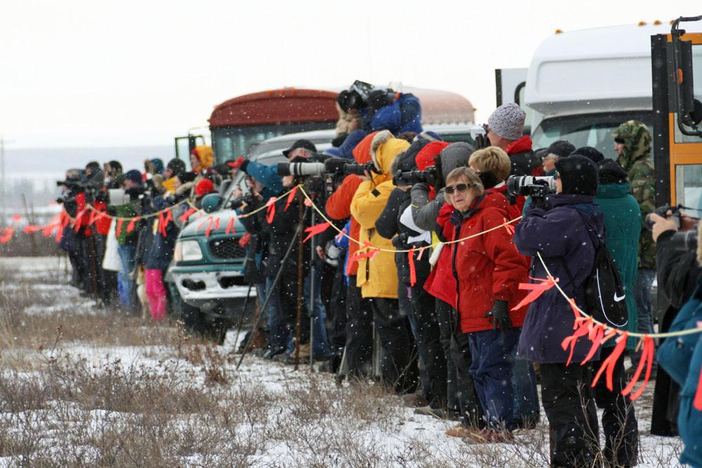Touristen mit Kameras vor dem Eisbärgefängnis in Churchill wollen Eisbären fotografieren