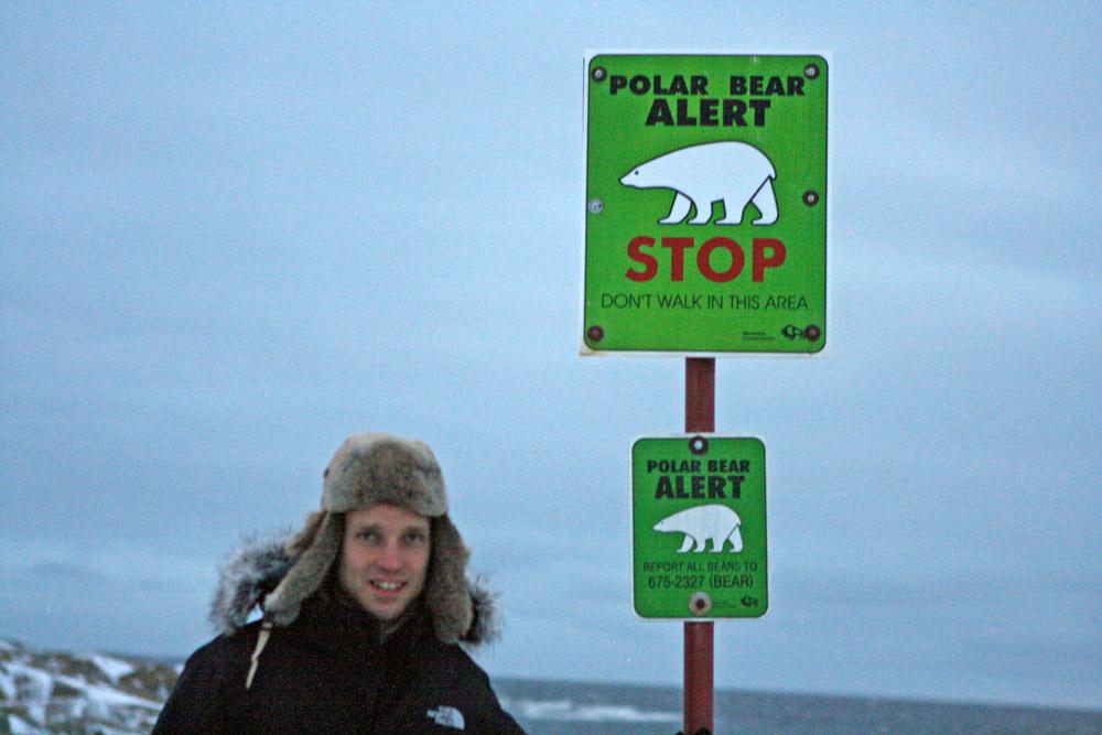 Warnung vor Eisbären in Churchill