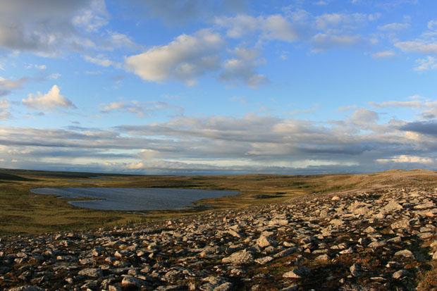 Die Tundra zeigte sich in bezaubernden Farben