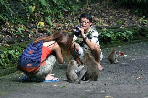 Die Affen waren allseits beliebte Fotomotive.