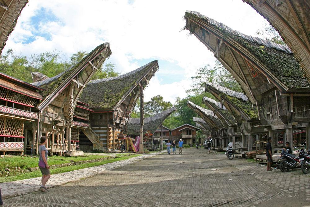Ein Dorf mit typischen Häusern der Tana Toraja auf Sulawesi in Indonesien