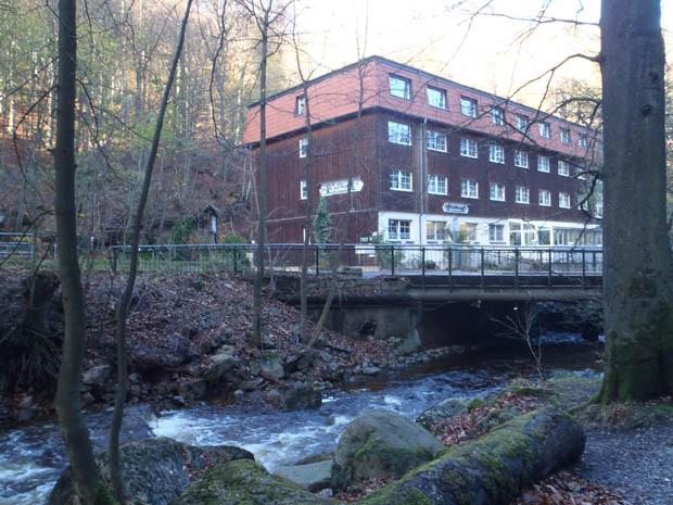 Treffende Hotelbezeichnung - Das Waldhotel