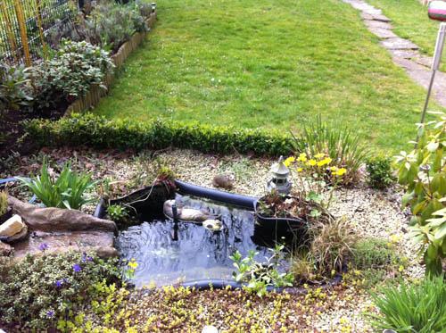 Ein neuer fertigteich mit moorbeet und katzen sonnendeck for Garten randgestaltung