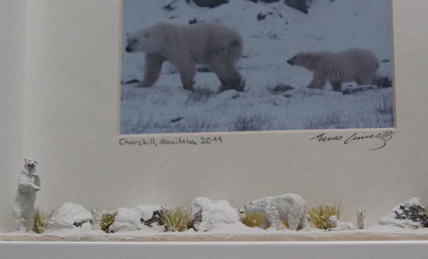 Detailansicht des Eisbär-Rahmens