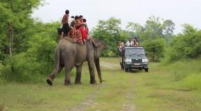 Auf Safari im Chitwan Nationalpark