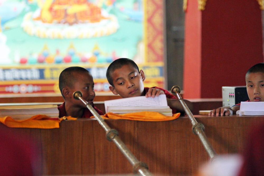 Einige junge Mönche alberten zwischendurch auch herum