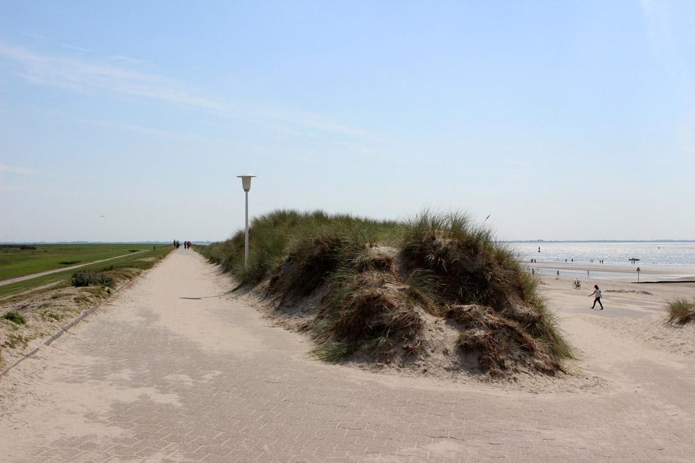 Dünen und Strand auf Norderney
