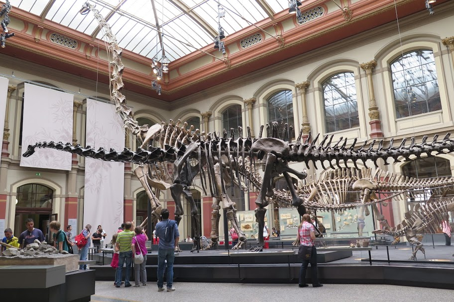 Das Museum für Naturkunde in Berlin