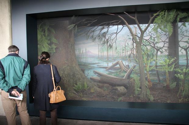 Das Ruhrgebiet vor 300 Millionen Jahren