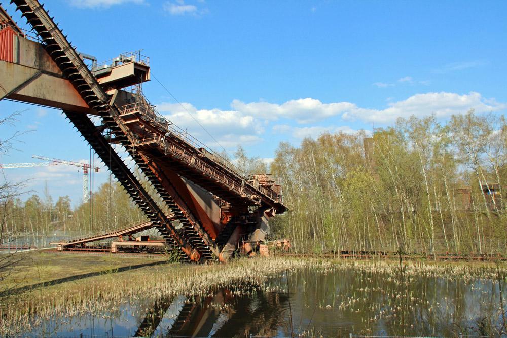 Die Natur erobert das Gelände der Kokerei und Zeche Zollverein im Ruhrgebiet zurück