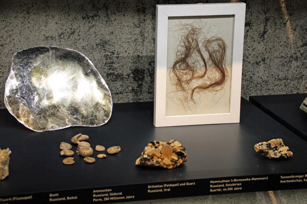 Die Haare eines Mammuts in einem Ikea-Rahmen