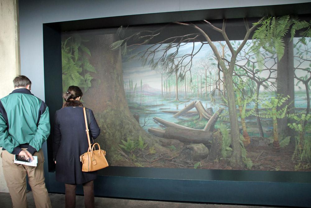 Vor 300 Millionen Jahren gab es im Ruhrgebiet einen Urwald