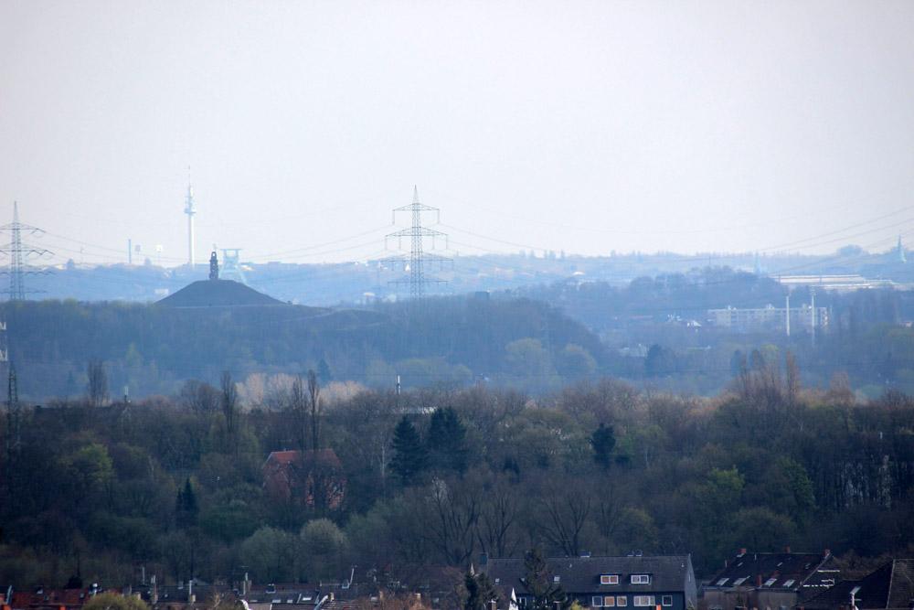 Die Halde Rheinelbe und dem Bergbaumuseum Bochum dahinter, sowie ganz in der Ferne der Florianturm in Dortmund
