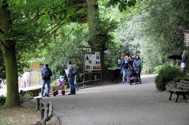 Der Zoo ist schön angelegt und sehr grün