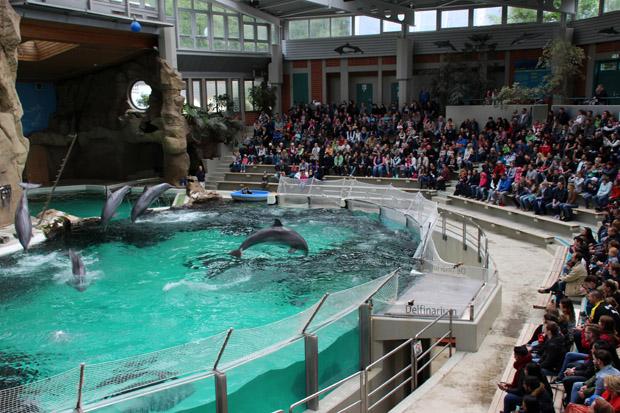 Das Delfinarium in Duisburg bietet Platz für 1300 Zuschauer