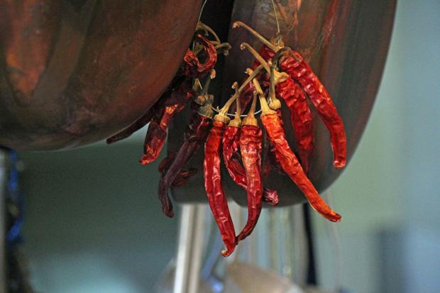 Getrocknete Chilis hängen in der Küche