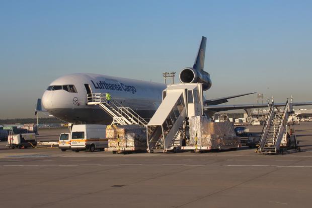 Aus dem Bus zum Terminal fotografierte ich einige Flugzeuge, wie diese MD11