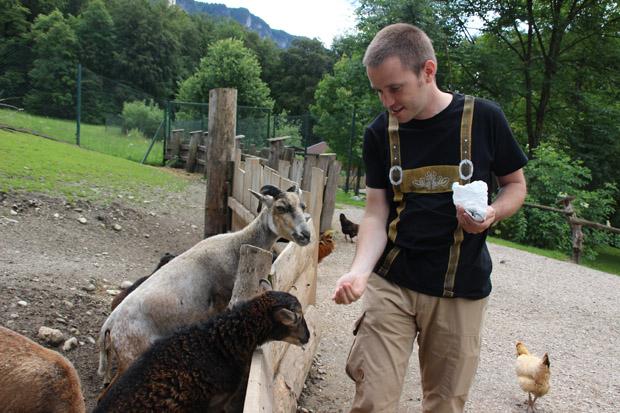 Ein Bereich ist verschiedenen Bauernhoftieren gewidmet