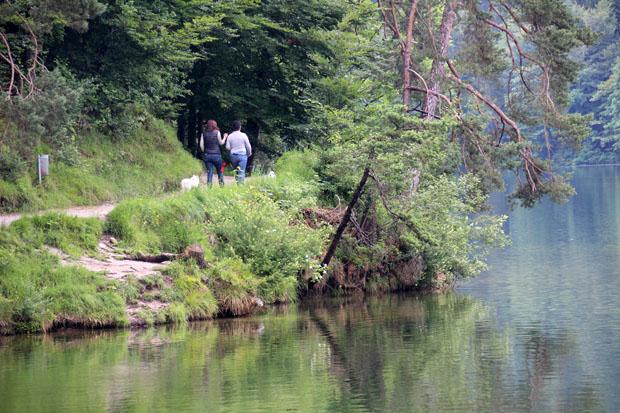Der Hechtsee lädt zum Baden und Wandern ein