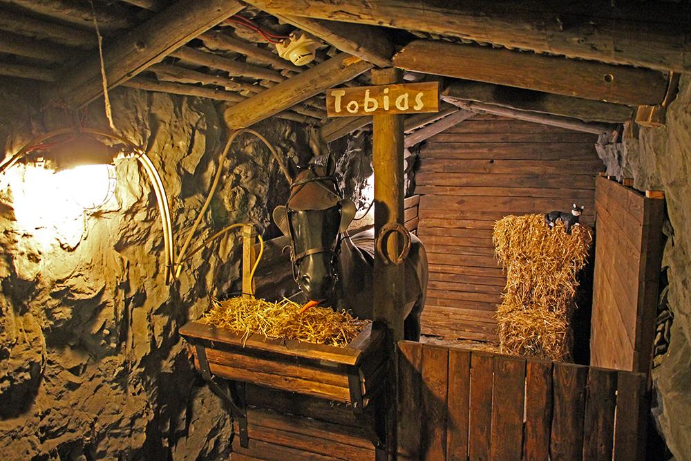 Das Grubenpferd Tobias befindet sich im Deutschen Bergbau-Museum Bochum