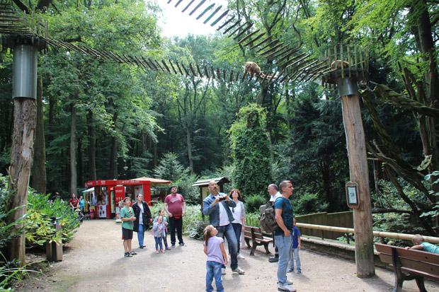 Solche Kletterbrücken gibt es zwar auch in anderen Zoos, sehenswert sind sie aber trotzdem