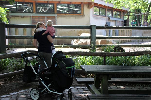Vor allem Rollstuhlfahrer und Kinder haben an vielen Stellen schlechte Karten