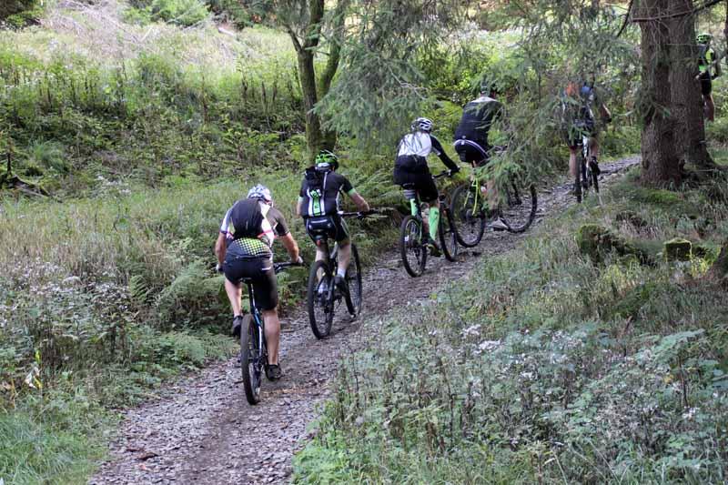 Auch Mountainbiker nutzen den Hexenstieg