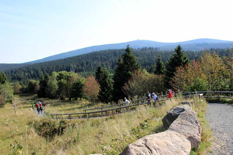 In Torfhaus starten mehrere Wanderwege