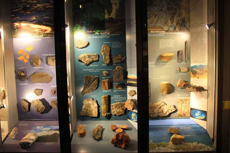 Eine Ausstellung über verschiedene Gesteine
