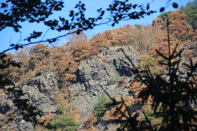 Steile Felswände ragen hinter der Bode auf