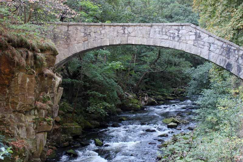 Ist diese Brücke nicht wunderschön?
