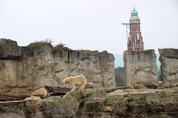 Der Zoo am Meer ist zentral gelegen