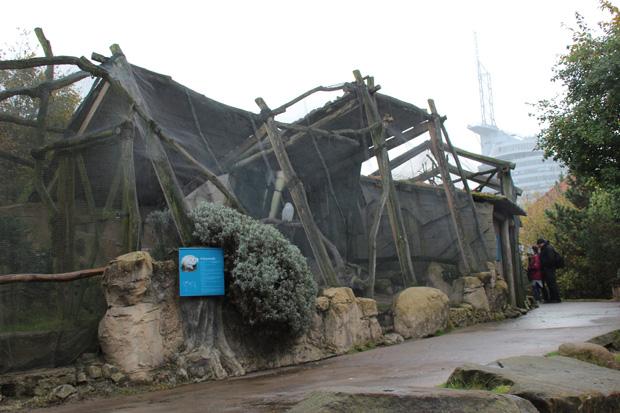 Allein schon einige Gehege im Zoo am Meer Bremerhaven sind sehenswert