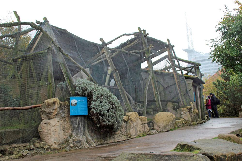 Allein schon einige Gehege im Zoo am Meer in Bremerhaven sind sehenswert