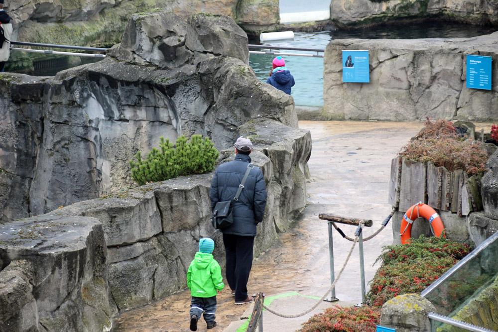Der Weg im Zoo am Meer schlängelt sich durch die künstliche Felslandschaft