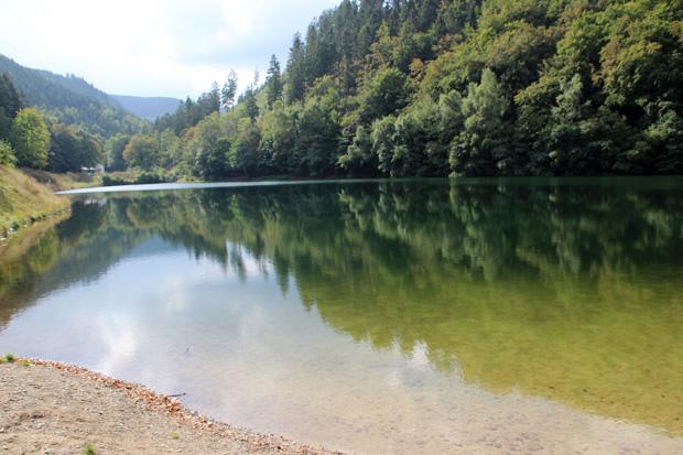 Der Herzberger Teich wirkt fast wie ein natürlicher See