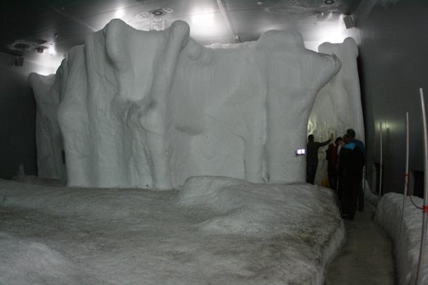 In der Antarktis trifft man auf echtes Eis