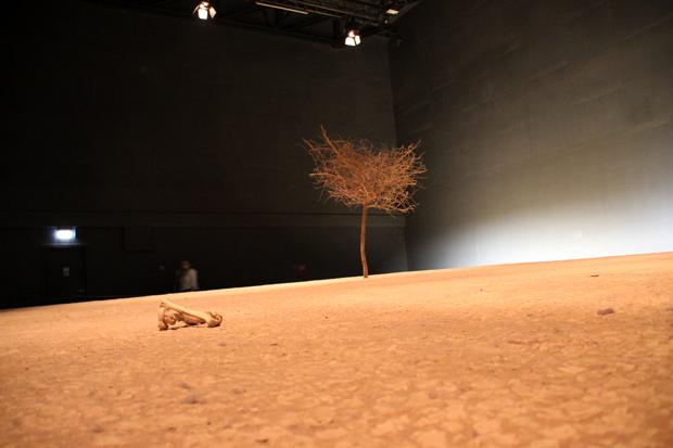 Trockenes Wüstenklima lässt sich im Klimahaus Bremerhaven nachvollziehen