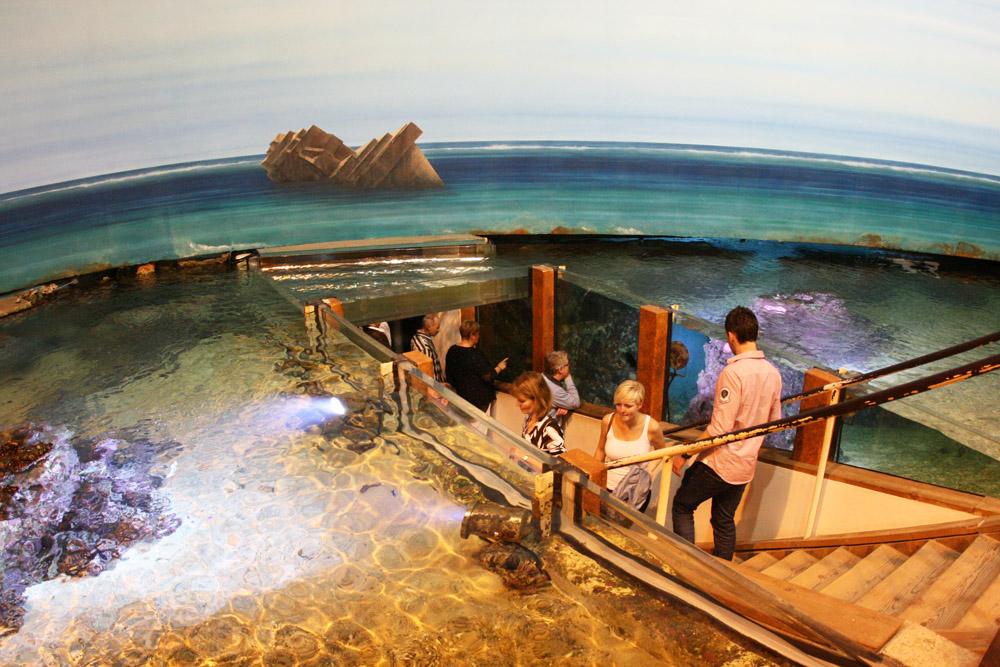 Samoa im Klimhaus Bremerhaven mit Aquarien, Fischen und einem Strand