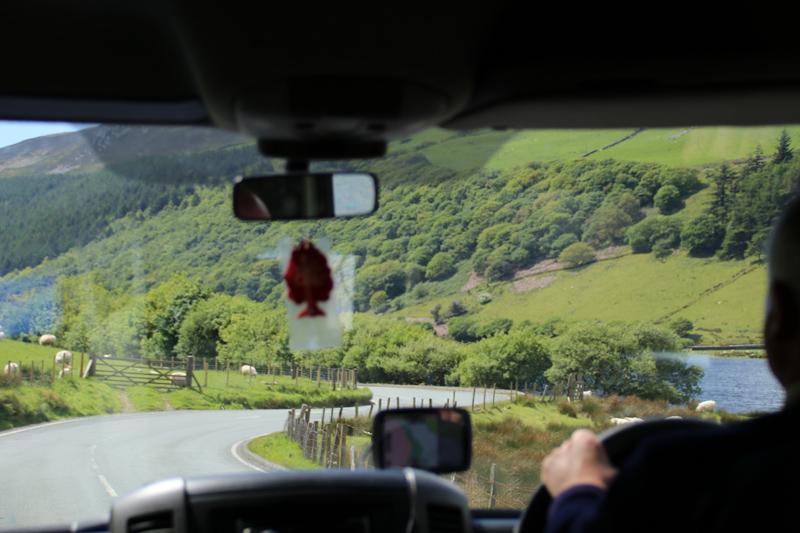 Die wenig befahrenen Straßen in Wales führen immer wieder an Schafen vorbei