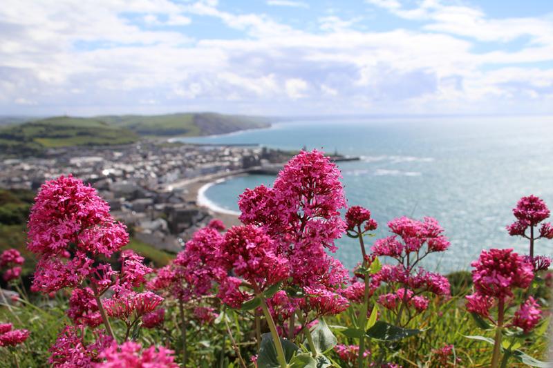 Wales ist auch ein Land der bunten Farben