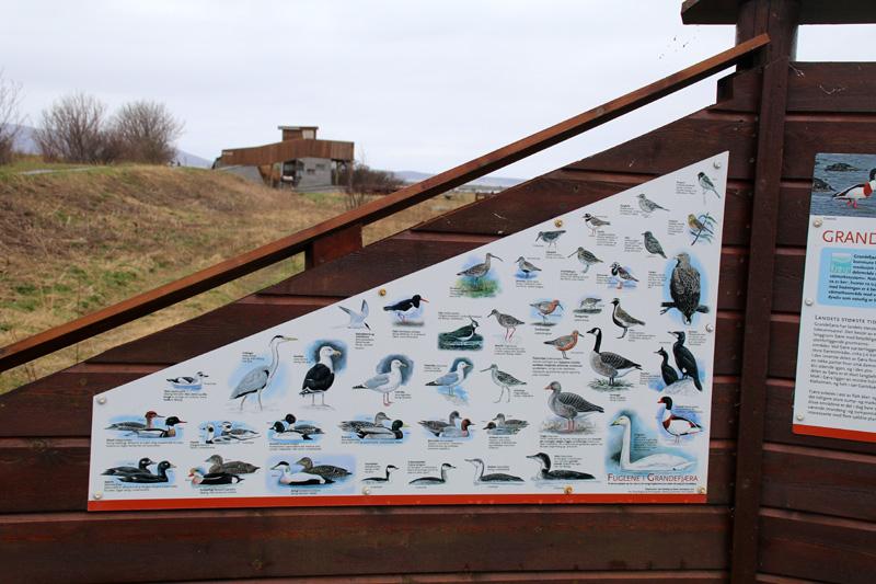 Am Strand weisen Infotafeln auf die unzähligen Vogelarten hin