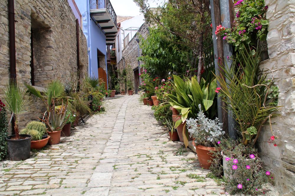 Mediterrane Kübelpflanzen stehen in den Straßen des Dorfes Lefkara im Troodos-Gebirge auf Zypern