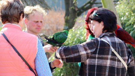 Mit einigen Vögeln können Selfies geschossen werden