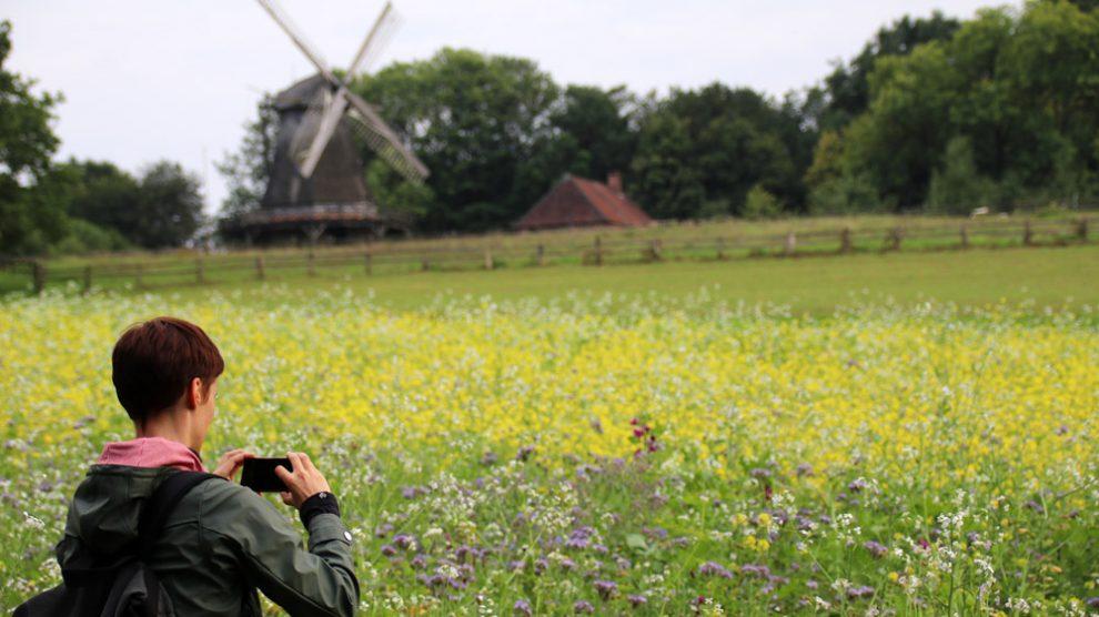 Das Freilichtmuseum Detmold bietet Fotomotive ohne Ende