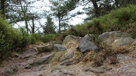 Sprichwörtlich über Stock und Stein führt der Weg hinauf zum Velmerstot