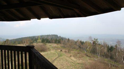 Vom Aussichtsturm auf dem Velmerstot bietet sich eine super Aussicht