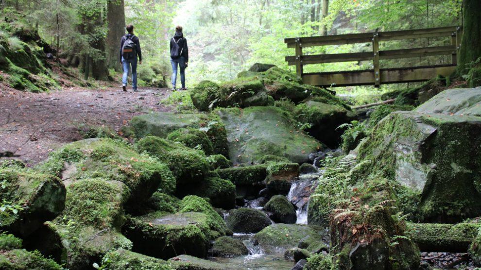 Das Silberbachtal ist eines der absoluten Highlights in der Nähe der Externsteine