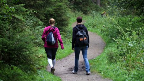 Eine Wanderung im Silberbachtal ist etwas ganz Besonderes